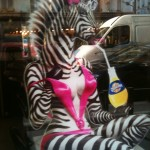 A Real Review and a Sexy Zebra!